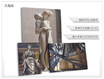 http://www.daqiprint.com/images/products_gallery_images/-226_thumb_04241227201611.jpg